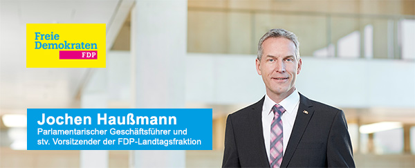 Herr Haußmann FDP